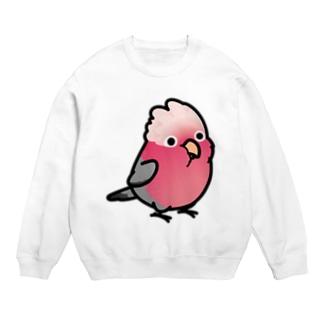 Chubby Bird モモイロインコ Sweats