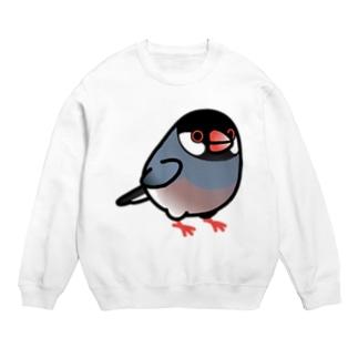 Chubby Bird 桜文鳥 Sweats