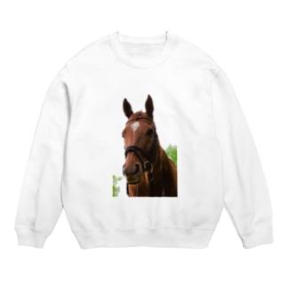 牧場 乗馬 馬術の馬 Sweats