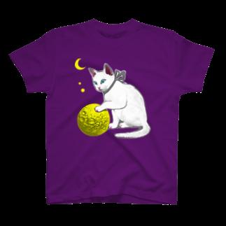 金星灯百貨店のボール遊びTシャツ