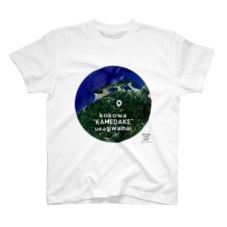島根県 仁多郡 Tシャツ Tシャツ