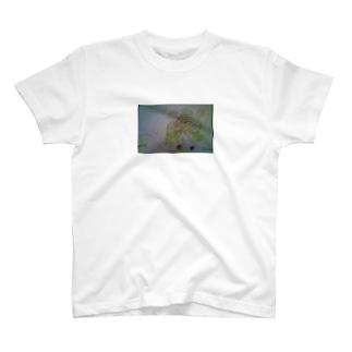 たんぽぽ Tシャツ