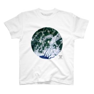 広島県 広島市 Tシャツ T-shirts