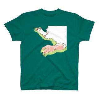 甘エビあんよ Tシャツ