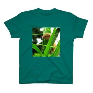 小さい小さいネズミ T-Shirt