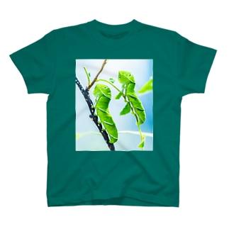 芋虫 T-shirts