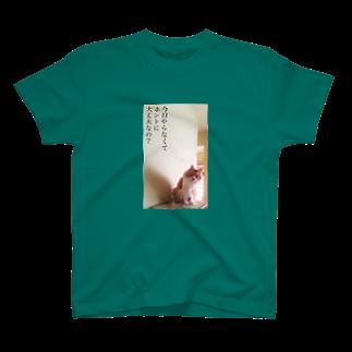 猫沢太陽の今日やらなくてホントに大丈夫なの? T-shirts