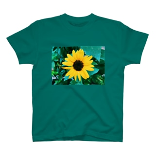 yellow_August T-shirts
