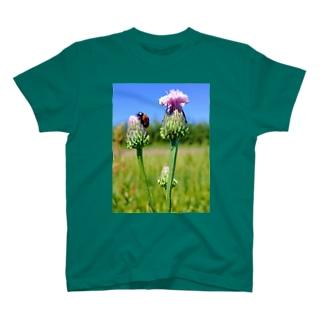 目指すぜ!てっぺん T-shirts