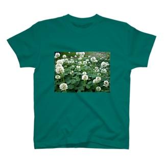 ただのクローバーよ。 T-shirts