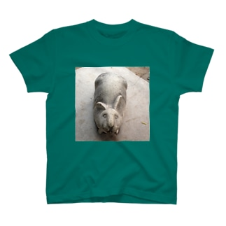 うさぎどの T-shirts