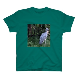 はしびろこうどの T-shirts