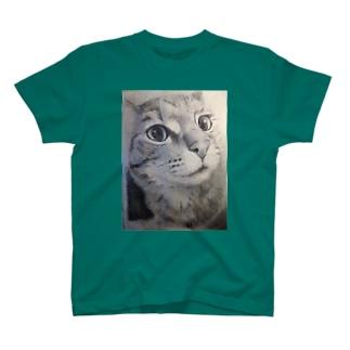 凡子モノ  小江戸の猛虎 T-shirts