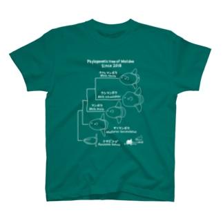 マンボウ科系統樹(魚) T-shirts