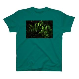 グリーンT T-shirts