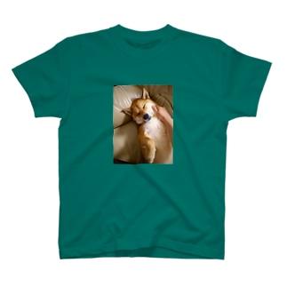 柴犬もふり T-shirts