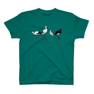 Ciconiidae 4 T-shirts