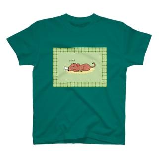 ぐうぐうケイちゃんおひるねブランケット T-shirts