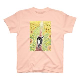 ひまわり畑のクロ T-shirts