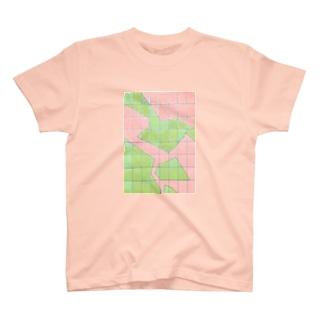 面積比 T-shirts