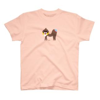 アルファベットTシャツM2 T-shirts
