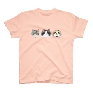 バースディパリスと仲間たち T-shirts
