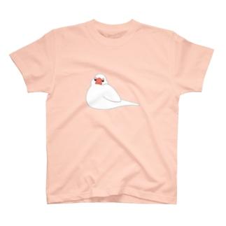 餅白文鳥 T-shirts