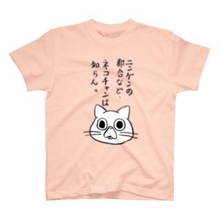 ネコチャンは知らんTシャツ T-shirts