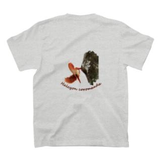 アカショウビンのアカシ T-shirts