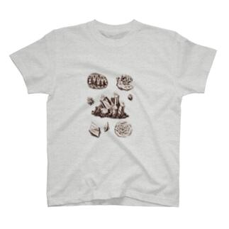 Haruka NishiyamaのNatural history #2  Minerals T-shirts