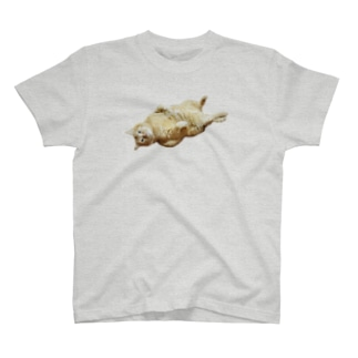 debu-涅槃T T-shirts