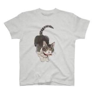 小夏 T-shirts