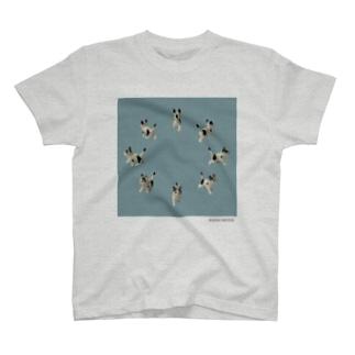 TKMTS STOREの【8cats】 ネコの解散 T-shirts