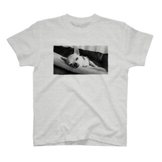 モノクロチワワ(アンニュイ2) T-shirts