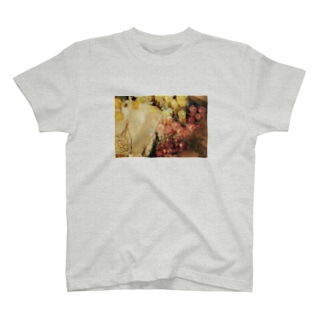 joie T-shirts