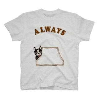 カンガルーポケットからボステントリア T-shirts