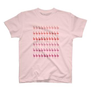 フラミンゴボーダー T-shirts