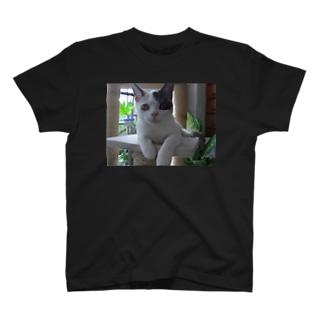 ENDEフェイス Tシャツ