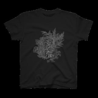 PygmyCat suzuri店のPygmyCat(グレー線ver)Tシャツ