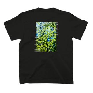 kimi≠boku T-shirts