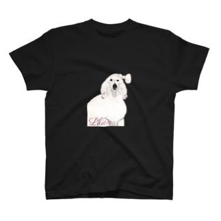 Lilien 4 T-shirts