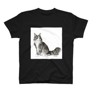 ノルウエージャンフォレストキャットのヤマトくん T-shirts