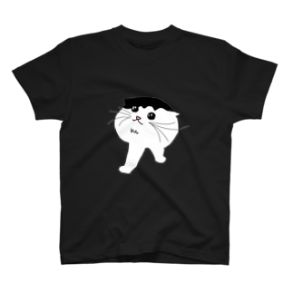 ちゅーるが大好き T-shirts