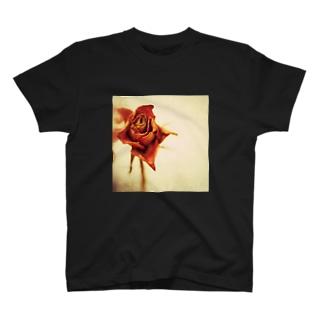 ドライフラワー(薔薇) T-shirts
