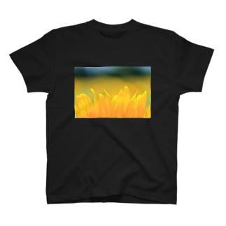 M.F.Photoのひまわり(花びら) T-shirts