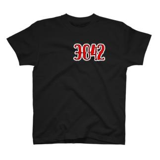 【3042】 全23色 T-shirts