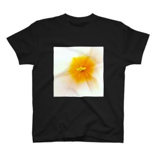 チューリップWH T-shirts