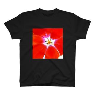 チューリップR T-shirts