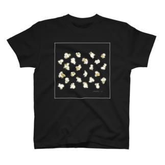 popcorn pack_white T-shirts