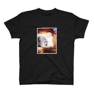 クリとたわし T-shirts